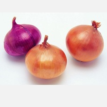 good price fresh red onion for export