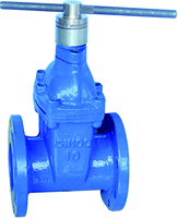 150mm gate valve cast iron gate valve drawing magnetic locking resilient seated iron valve with flange
