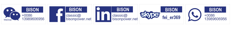 BISON(CHINA) power craft generator products