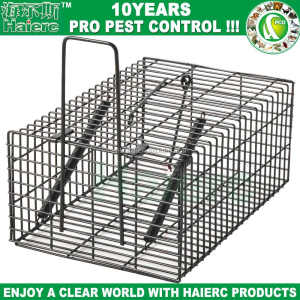 Haierc Small Humane Animal Live Cage Trap Mouse Iron Cage Trap for Rodents, Rats, Mice,Chipmunk,Squirrel and Weasel (HC2601M)