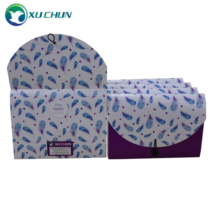 Poly Frequency Expanding File 13 Pockets Flap and Cord Closure purple Colour