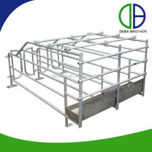 Customized Automatic Pig Equipment Pig Crates