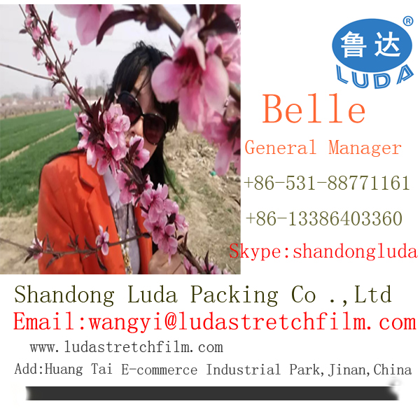 ShanDong Luda 2016 best sales transparent handmade LLDPE packing material stretch film roll