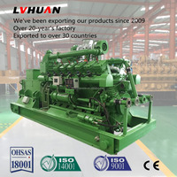 factory supplier electricity power plant alternative energy 1000kw gas generator