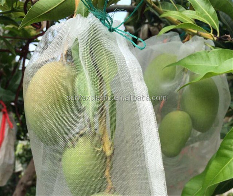 Insect Net Bag Eggplants Tomatoes Greenhouse Protective
