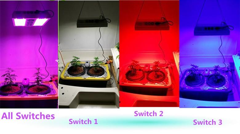 Colorful Led Plant Light Battery Ed Grow Lights Saga 840w