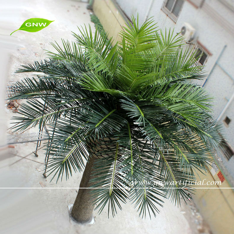 Large Outdoor Artificial Palm Trees 6 Meter for Landscape Design Best Quality
