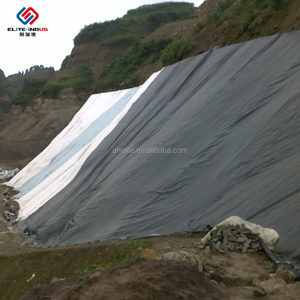 China ASTM Hdpe Geomembrane Professional Manufacturer Farming Materials