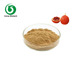 Gac Fruit / Momordica Cochinchinensis Powder