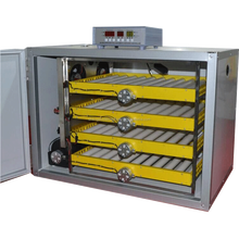 New Roller type full automatic 240pcs chicken egg incubator for sale