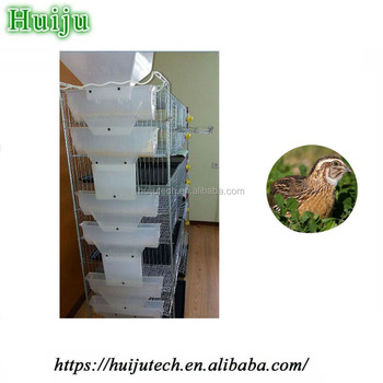 Good quality quail cage HJ-QC400A with 12pcs water cups