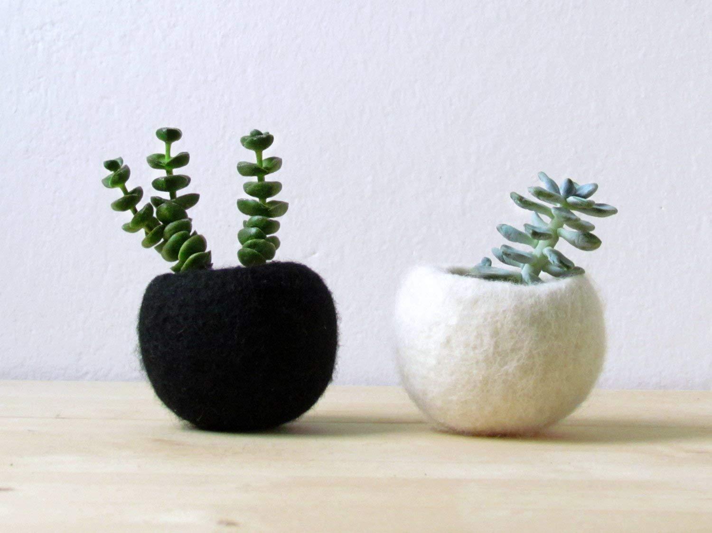 Succulent planter/Best friends forever planter/air plant holder/cactus pot/plant vase/modern decor/set of 2