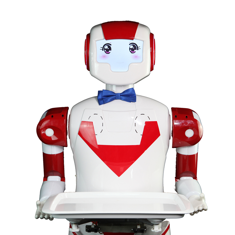 1st generation Shanghai Humanoid Robots at wholesale prices