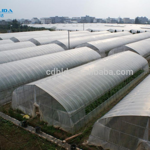 Plastic Blackout Green House/Vegetable Used Green house