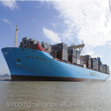 Professional DDU/DDP LCL sea shipping agent From China to Netherlands
