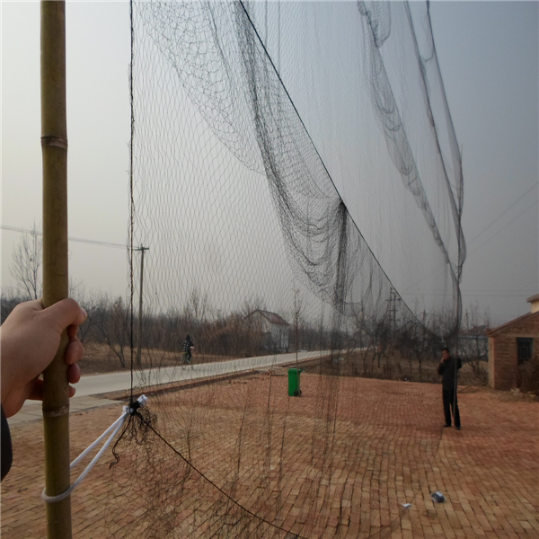 Black 210/18 Multi Filament Twine Bird Mist Nets Nylon With 10pocket,Nylon Bat Nets To Catch Birds,Wijngaard Mist Netten Te Koop