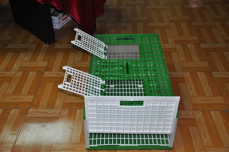 Single T-trap Pigeon Cage Door Metal Pigeon Cages Wooden Antique Pet Bird Cage - Buy Metal Pigeon CagesMetal Quality Pigeon Cage(manufacture)Metal Pigeon ... & Single T-trap Pigeon Cage Door Metal Pigeon Cages Wooden Antique ... Pezcame.Com
