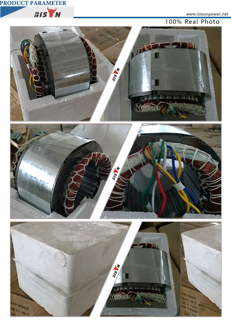 Bison(china) Copper Wire 2kw Stator For Engine,Lifan Engine Parts ...