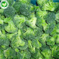2020 High Quality Fresh Vegetable Frozen broccoli