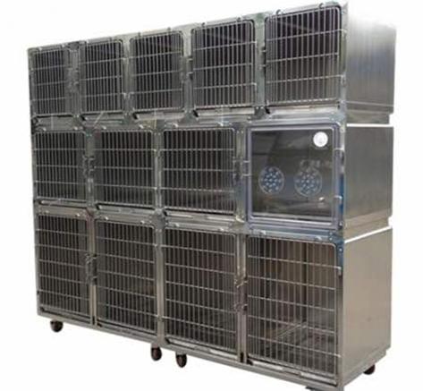 Veterinaria in acciaio inox grande gabbia gabbia del gatto con ossigeno gabbia