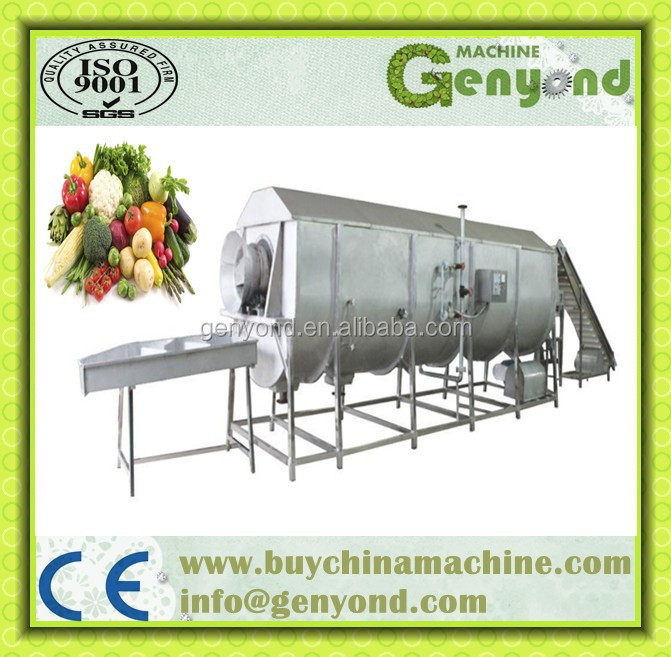 Steam Blanching Machine For Vegetable And Fruit Processing