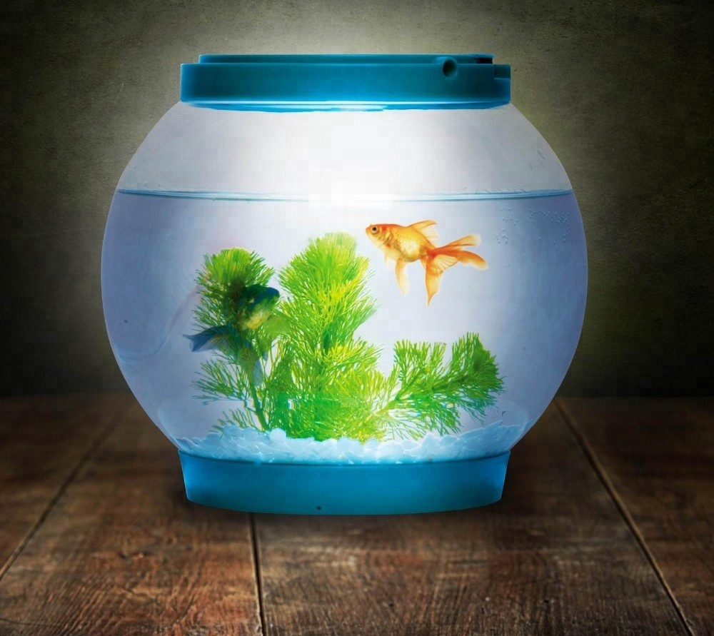 Small clear round glass <strong>fish</strong> tank <strong>fish</strong> bowl aquarium tank with small LED light lid for gift or kids toy or desk decoration