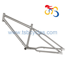 Fat tire bike frame TSB-ZJS0901