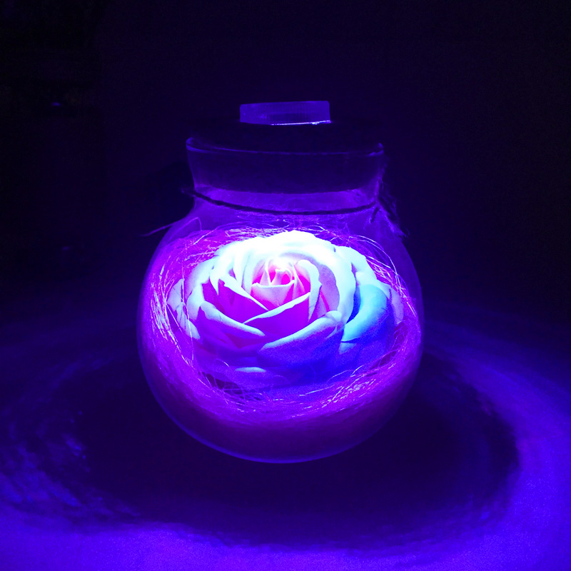 Led Romantic Rose Flower Night Light Lucky Bottle RGB Dimmer Lamp With 16 Color Remote Holiday Gift For Lover Girl Bedroom Decor (18)