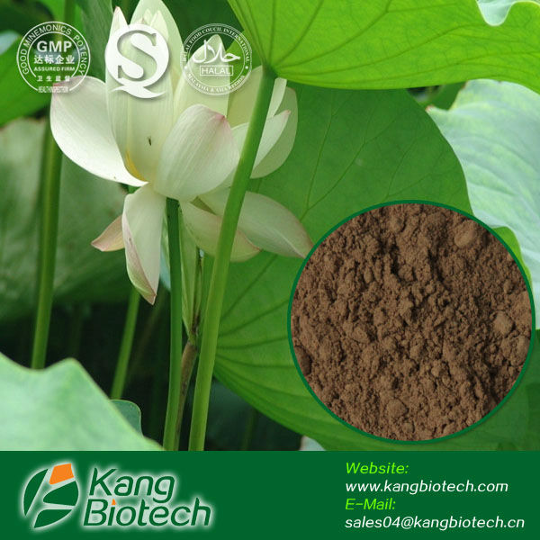 100% natural nutraceuticals raw material lotus leaf extract