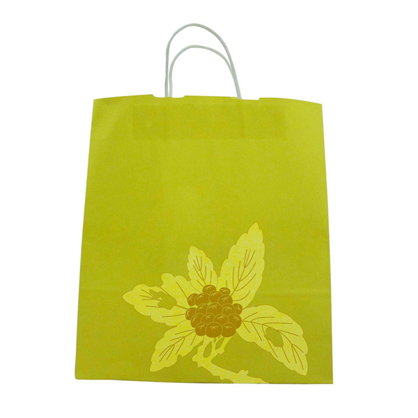 shopping paper bag girls paper bag clothes paper bag