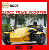 3 Wheel Water Cooled Engine Roadster Racing Quad 250cc