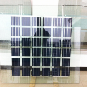 Yangtze transparent solar panels 200w for BIPV green house