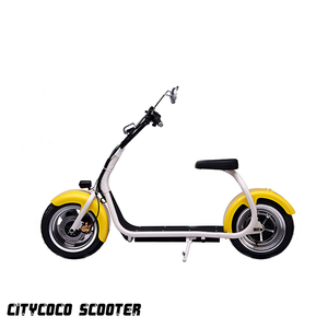 Smart Big fat tire scooter 18*9.5 inch hub motor electric scooter citycoco 1000w