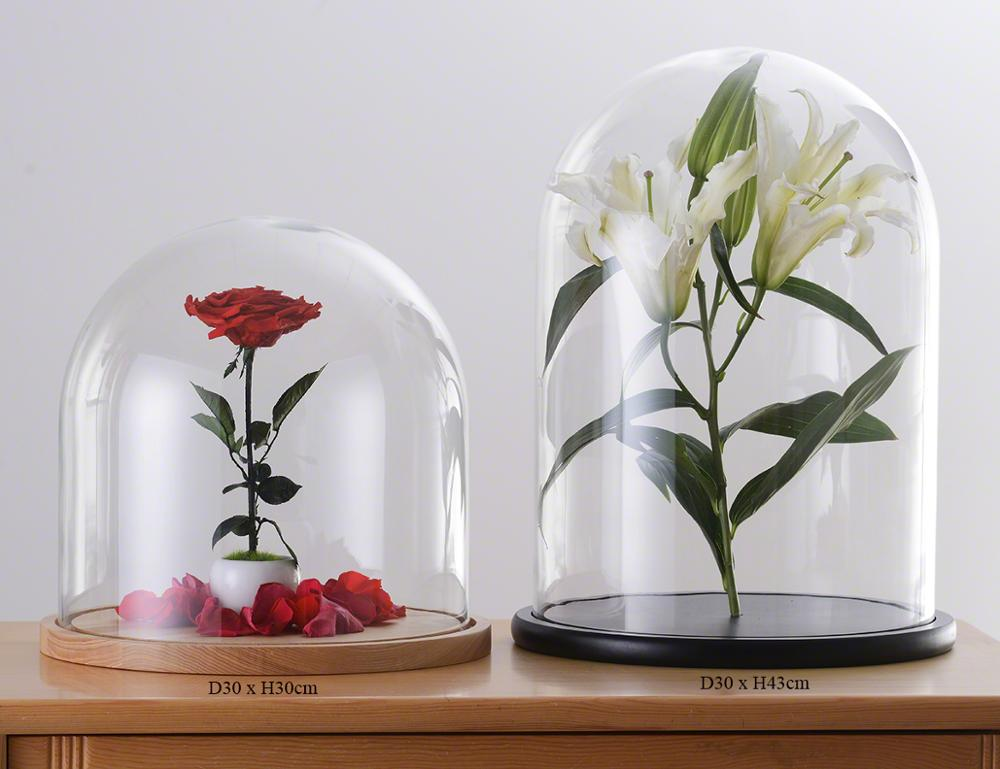 Display Glass Dome Cover Without Wood Base D30xH43cm (D11.81xH16.93 inches)