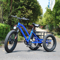China manufacturer long range fat tire electric trike With Promotional Price
