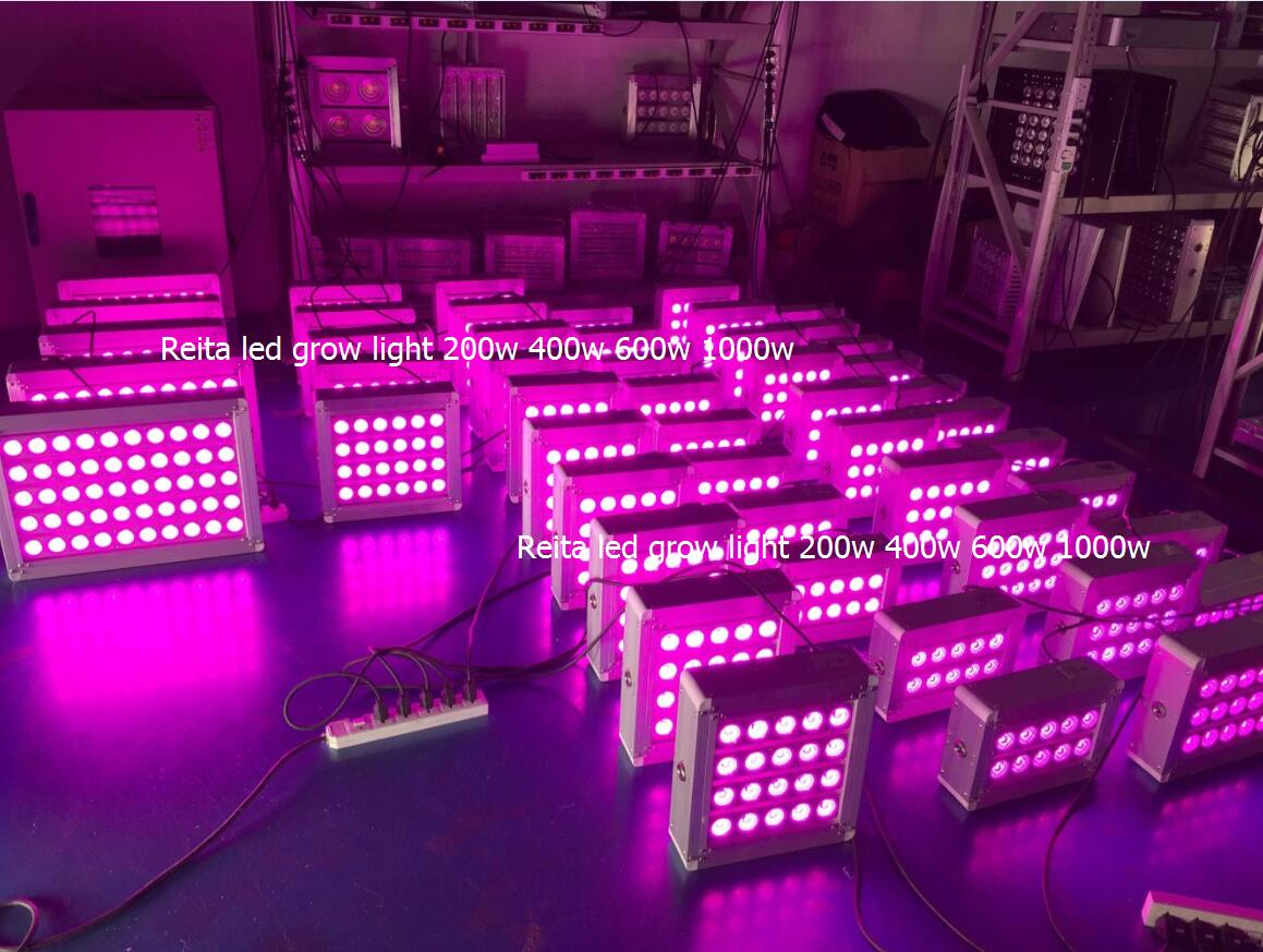 2019 greenhouse indoor plant lamp led grow light full spectrum 1000w