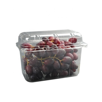 Disposable Plastic fruit Box Take-away Box Plastic Food Container