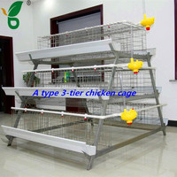 chicken use galvanized steel material A type chicken cage for layer