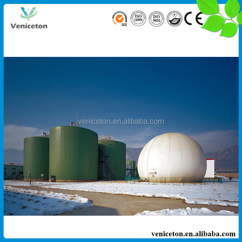 Veniceton China fast installation small biogas plant to treat waste into biogas for cooking
