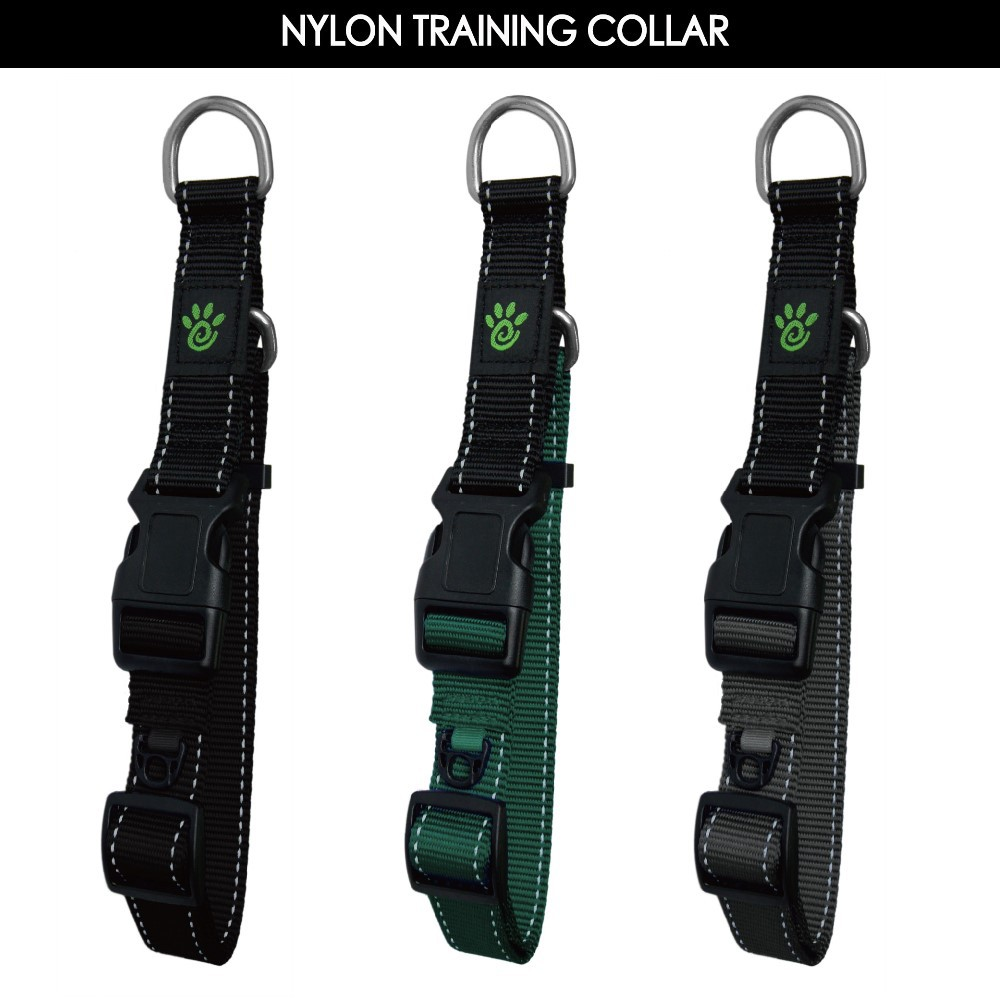Reflective Stitching Nylon Collar for Dog Training