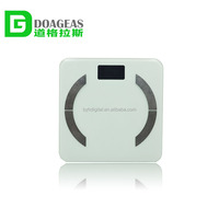 Professional body scale composition analyzer