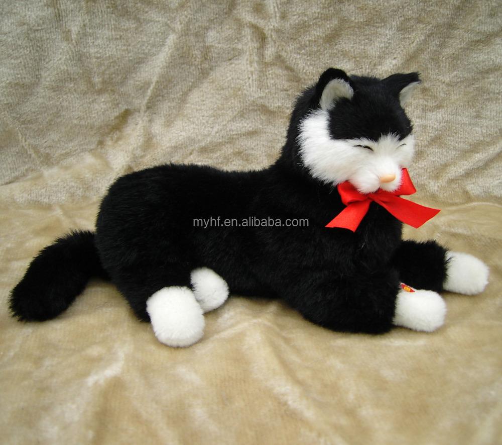 Download 78+  Gambar Kartun Kucing Berpelukan Terlihat Keren HD