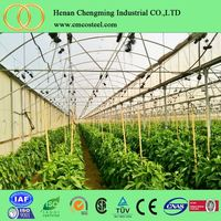 professional factory insect netting for vegetable gardens/insect netting greenhouse