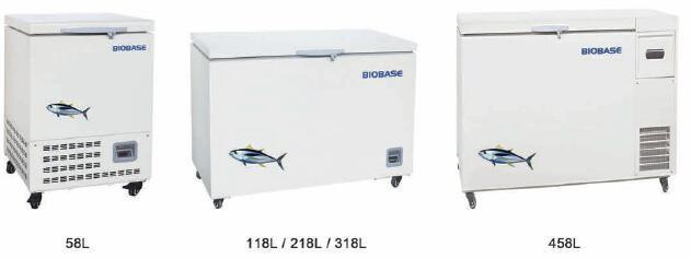Wonderful BIOBASE Quick Freezing Machine Tuna Freezer/Cold Closet
