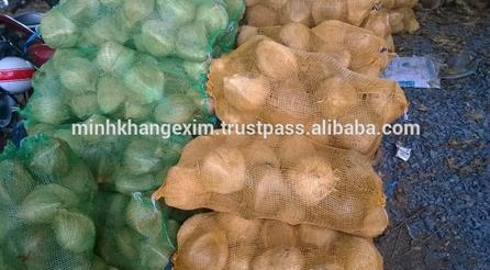 Dried Mature Coconut - Qq : 2598494113
