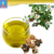 Camellia seed oil press and refining Grade-One camellia oil,Camellia seed expeller