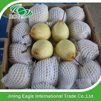 Chinese new fruit products fresh ya pears with good quality