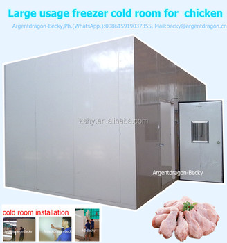 Large usage deep freezer cold room for chicken
