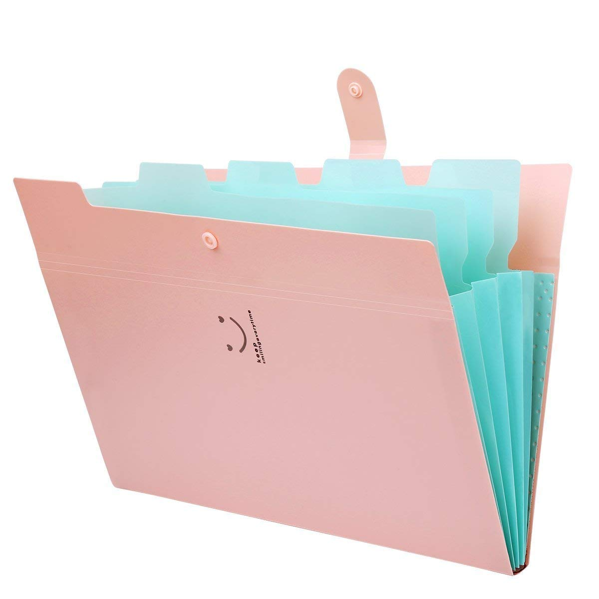 YILUYIQI EU Portable Accordion Expanding File Folder 5 Pockets, Expanding A4 and Letter Size File Organizer for Office, Home, School, Travel