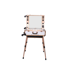 2019 factory new design professional portable makeup trolley case studio with light